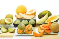10 Surpreendentes Benefícios do Melão para a Saúde